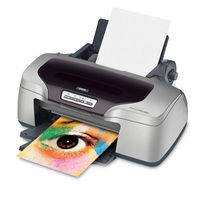 Epson Stylus R800 InkJet Printer