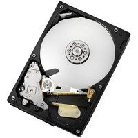 1TB (1000 GB) Hitachi Deskstar SATA II 300 32MB cache 7200rpm Hard Disk Drive (Please note this driv... SATA II Hard Drive