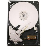 Hitachi 750GB Ultrastar A7K1000 3.0 GB/s SATA Internal 750 GB SATA Hard Drive