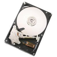 Hitachi Deskstar 7K1000 1 TB SATA Hard Drive
