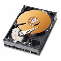 Western Digital Caviar WD2000BB 200 GB ATA-100 Hard Drive