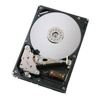 Hitachi Deskstar 7K500 500 GB SATA Hard Drive
