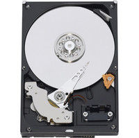 Western Digital Caviar SE16 400 GB SATA Hard Drive (Package of 20)