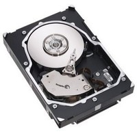 Seagate Cheetah 15K.5 300 GB SCSI Ultra320 Hard Drive
