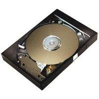 Seagate DiamondMax Plus 8 40 GB SATA Hard Drive