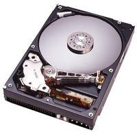 Hitachi Deskstar 7K250 80 GB SATA Hard Drive