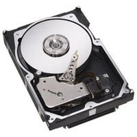 Seagate Cheetah 10K.7 ST3300007LW 300 GB SCSI Ultra320 Hard Drive (Package of 20)