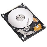 Seagate Momentus 40 GB ATA-100 Hard Drive