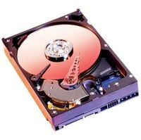 Western Digital Caviar SE16 WD3200KS IDE Hard Drive (Retail Version)
