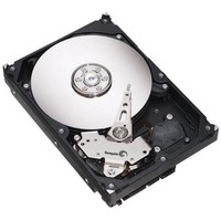 Seagate Barracuda 7200.10 EIDE Hard Drive
