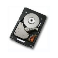 Hitachi Ultrastar 15K147 147 GB Fibre Channel Hard Drive
