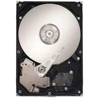 Seagate Barracuda 7200.10 750 GB SATA Hard Drive