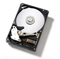 Hitachi Deskstar 7K250 250 GB ATA-100 Hard Drive