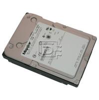 Seagate Atlas 15k II 36 GB SAS Hard Drive