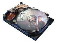 Seagate U5 30 GB ATA-100 Hard Drive