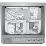 Pelco PMM15A (Black) 15 inch CRT Monitor