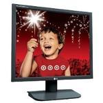 LG Flatron L1718S (Black) LCD Monitor