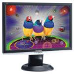 ViewSonic VX2240w (Black, White) LCD Monitor