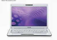 Toshiba Satellite T100 Series Black Notebook Computer - T135-S1305