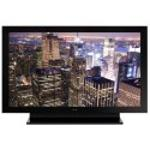 Pioneer KURO Elite PRO-101FD 50  Plasma Display  Widescreen  1920x1080  HDTV