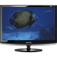 Samsung 2433BW Black 24  Widescreen LCD Monitor  24   1920x1200  5ms  DVI