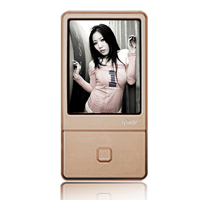 iRiver iriver E100 4 GB Multimedia Player  Brown