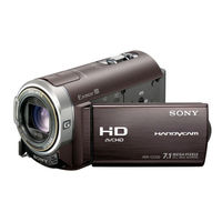 Sony HDR-CX300 Camcorder