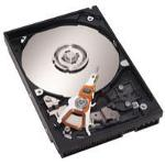 IBM  24P3727  73 4 GB SCSI Ultra320 Hard Drive