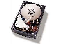 IBM UltraStar 146Z10 146 8 GB Fibre Channel Hard Drive