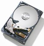 Hitachi T7K500 320 GB IDE Hard Drive