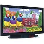 ViewSonic ND5000 50 in  Plasma TV
