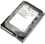 IBM DS4000 300 GB Fibre Channel Hard Drive