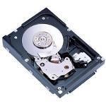 Fujitsu  MAU3147NP  147 GB SCSI Ultra320 Hard Drive
