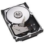 Hewlett Packard  328938-B21  4 3 GB SCSI-2 Fast Wide  16-bit  Hard Drive