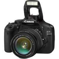 Canon EOS 550D /  EOS REBEL T2i Digital Camera with 55-250mm lens