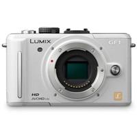 Panasonic Lumix DMC-GF1 Digital Camera with 14-42mm lens