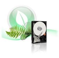 Western Digital Caviar Green (WDBAAY0020HNC-NRSN) 2 TB SATA II Hard Drive