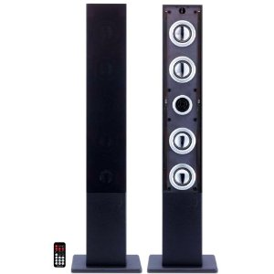 Craig Electronics CHT909n Tower Speaker System
