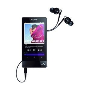 Sony Walkman NWZ-F806BLK (32 GB) Digital Media Player
